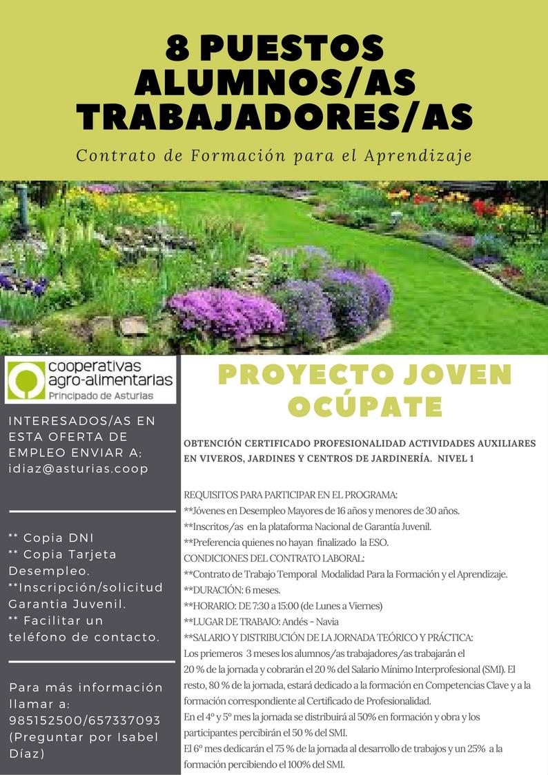 Proyecto joven oc pate jardiner a en t ifaros navia for Auxiliar jardineria