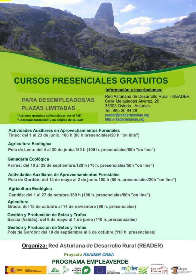 cartelCursosAsturiasBuenocompressed